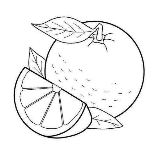 22 Fruits coloring pages - Preschool - Aluno On