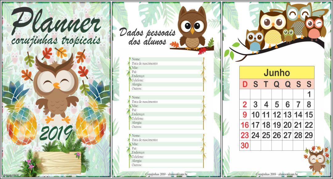 Planner Corujinhas tropicais 2019